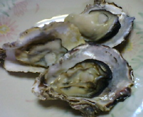 牡蠣(カキ)でボーノ